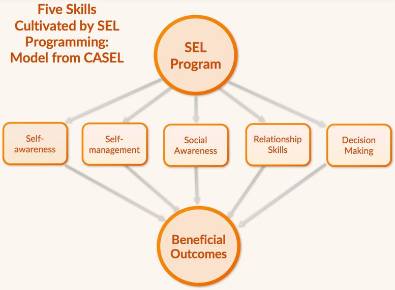 SEL Skills